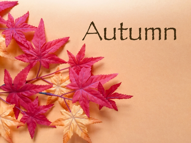 FallとAutumnは、どっちがメジャーな単語?